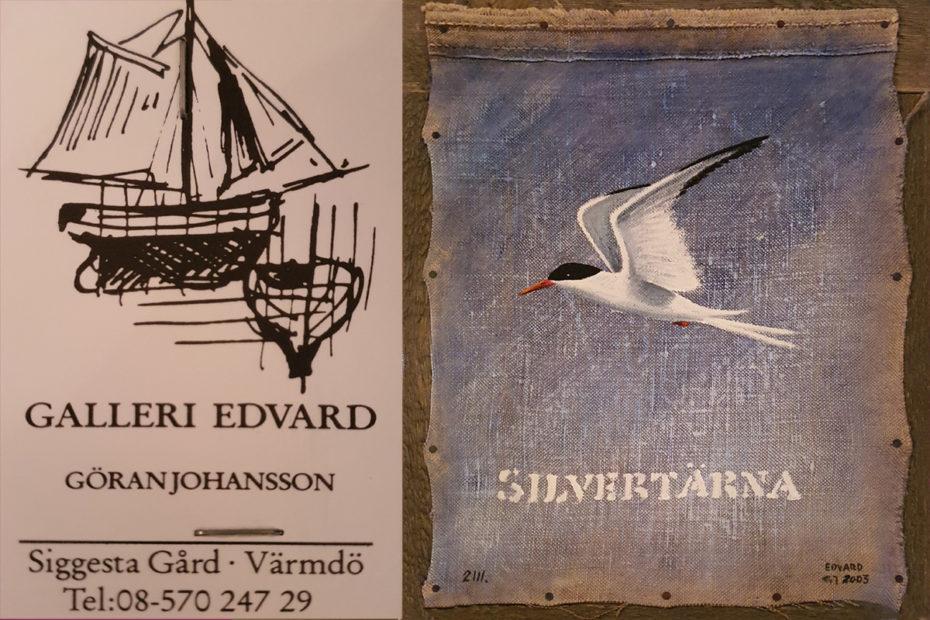Silvertärna av Göran Johansson
