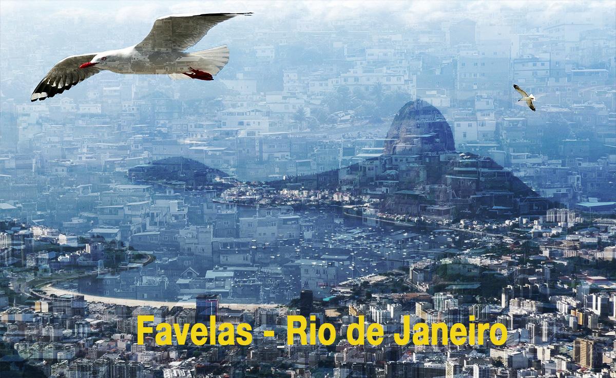 Polischef-i-Rio-de-Janeiro